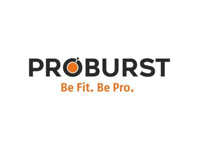 Proburst - WITS Interactive clients list
